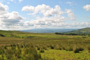 Divis Mountains